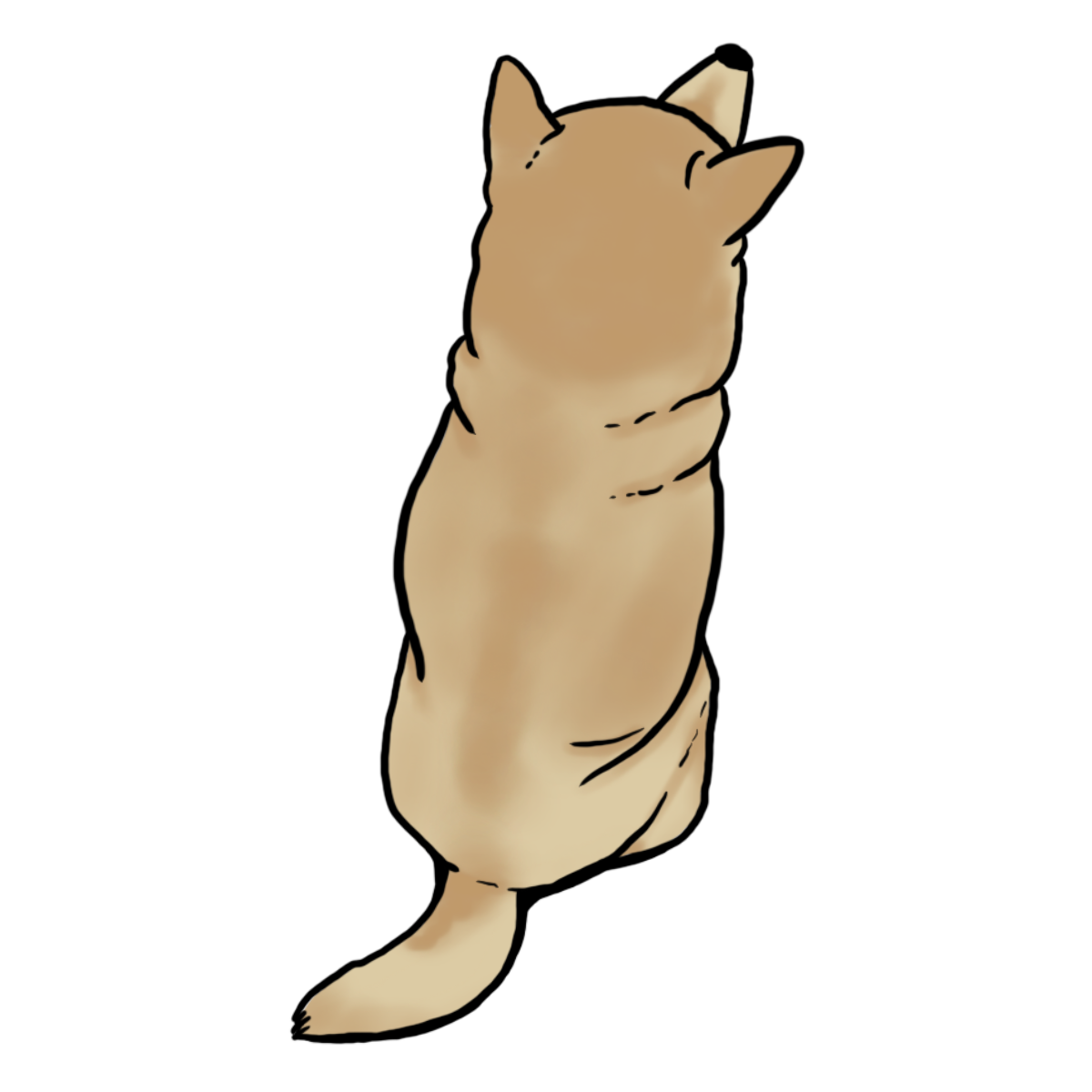 dog back view drawing