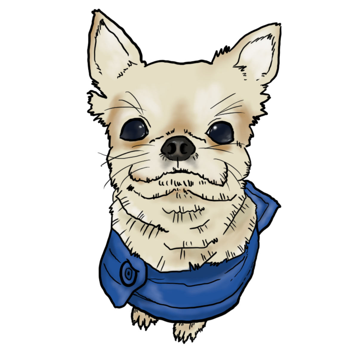 dog wearing clothes (Chihuahua) drawing